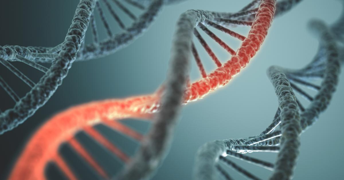 Cancer's genetic secrets revealed through massive international study