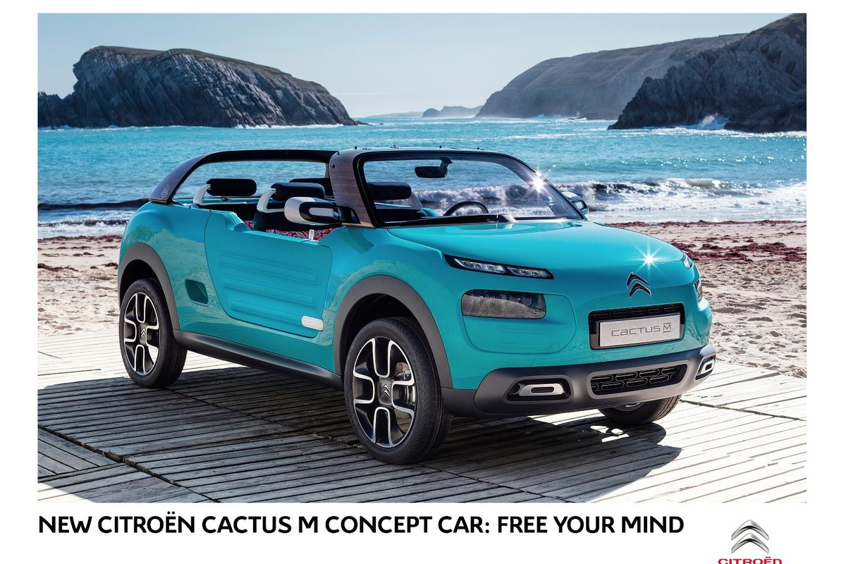 Rugged Airbump plastic features on the side of the car, just like it does on the road-going Cactus