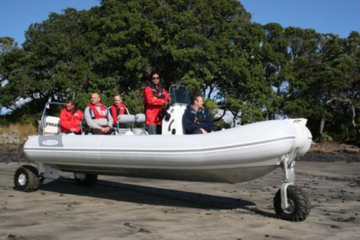 Sealegs amphibious boats