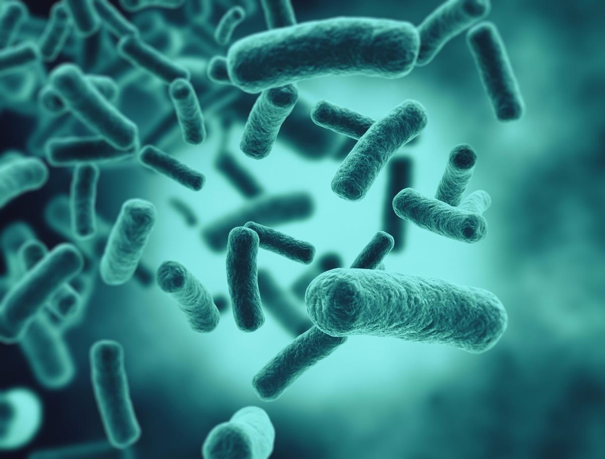 Bacteria, the factory workers of the future?