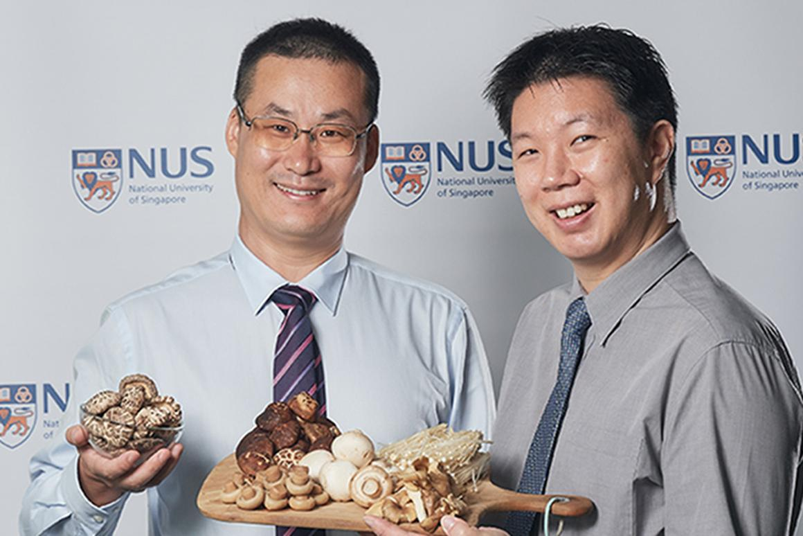 Thestudy was led by Asst. Prof.Feng Lei (left) andDr. Irwin Cheah