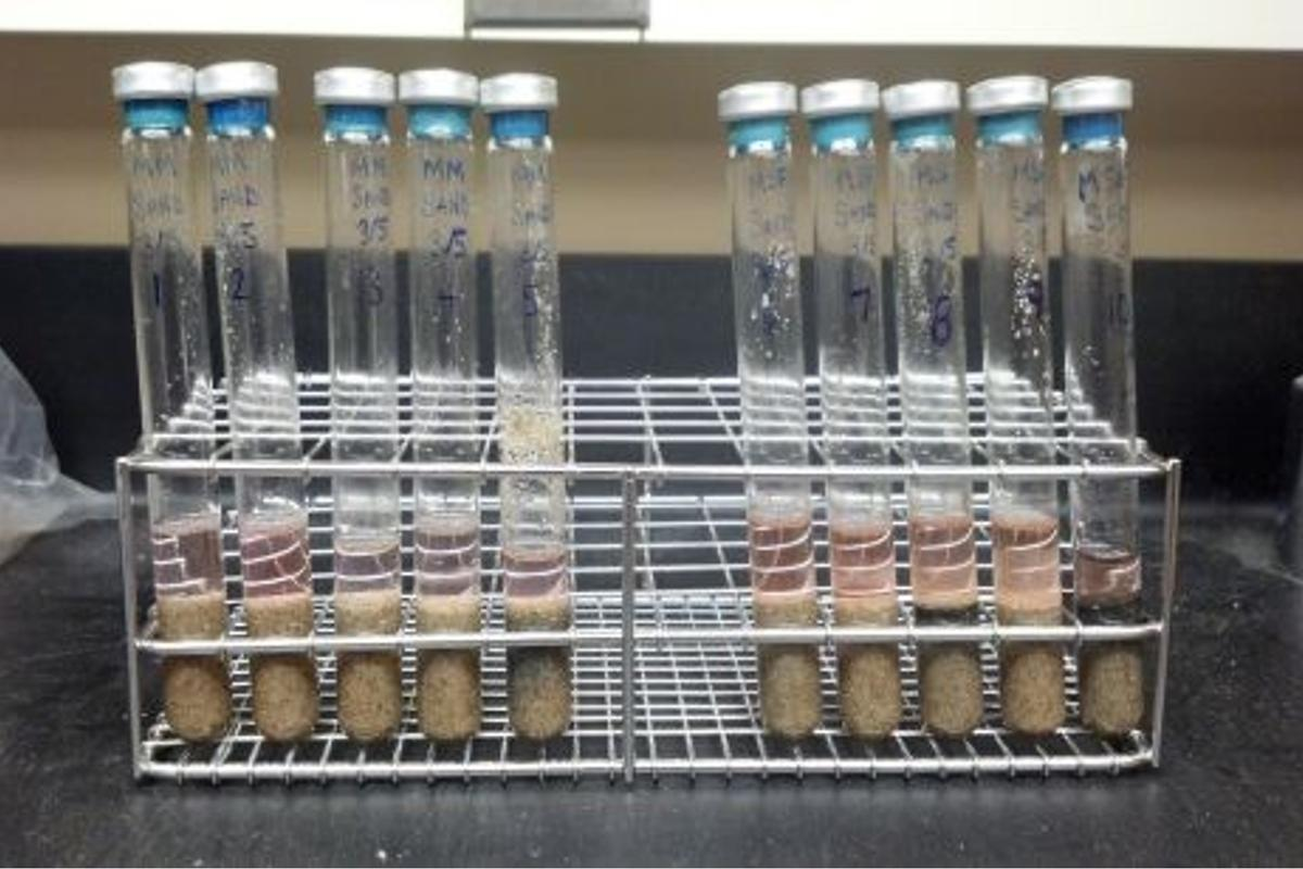 Methanogens prepared to be exposed to Martian conditions