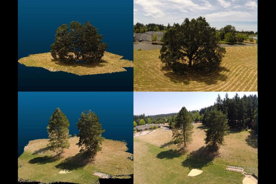 The forest simulator was developed partly from footage captured by aerial drones
