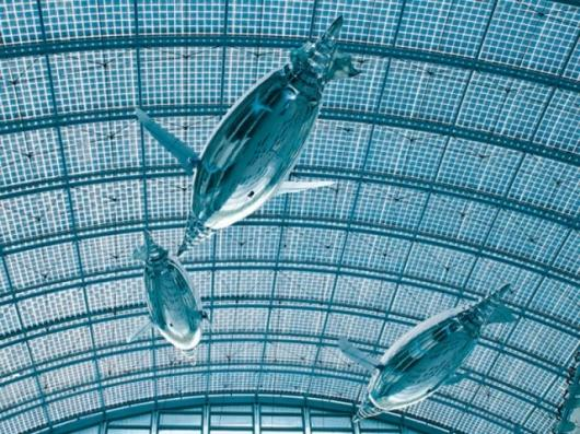The space age looking AirPenguins