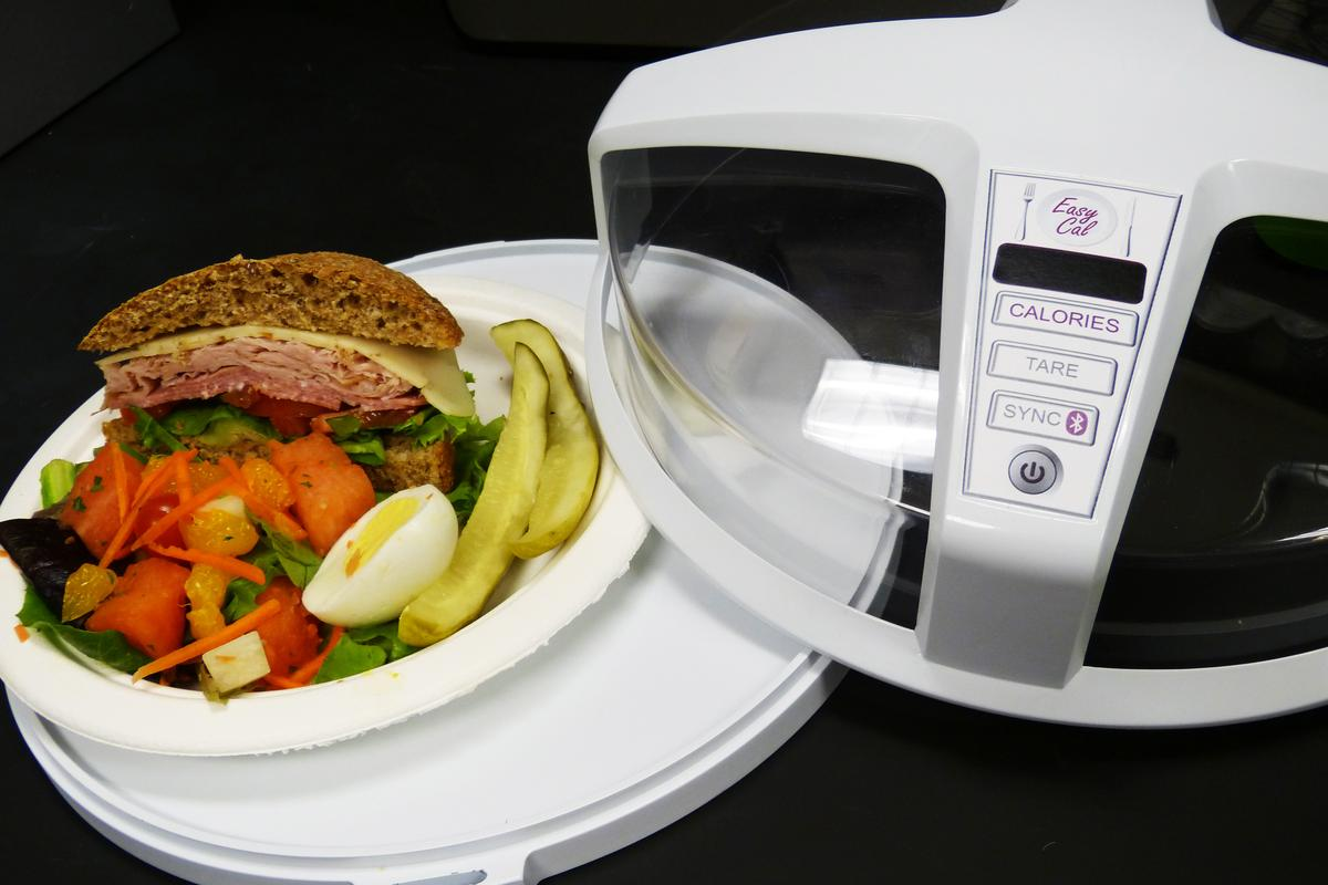 A mock-up of the universal calorie counting device