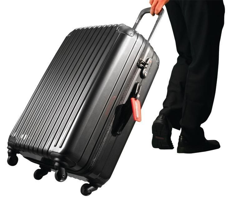 If you're a bed bug, don't get into this suitcase