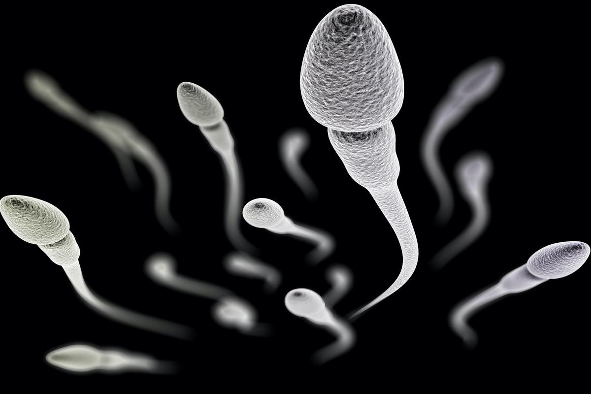 When heated via an alternating magnetic field, the nanoparticles lowered the sperm count in male mice for one week