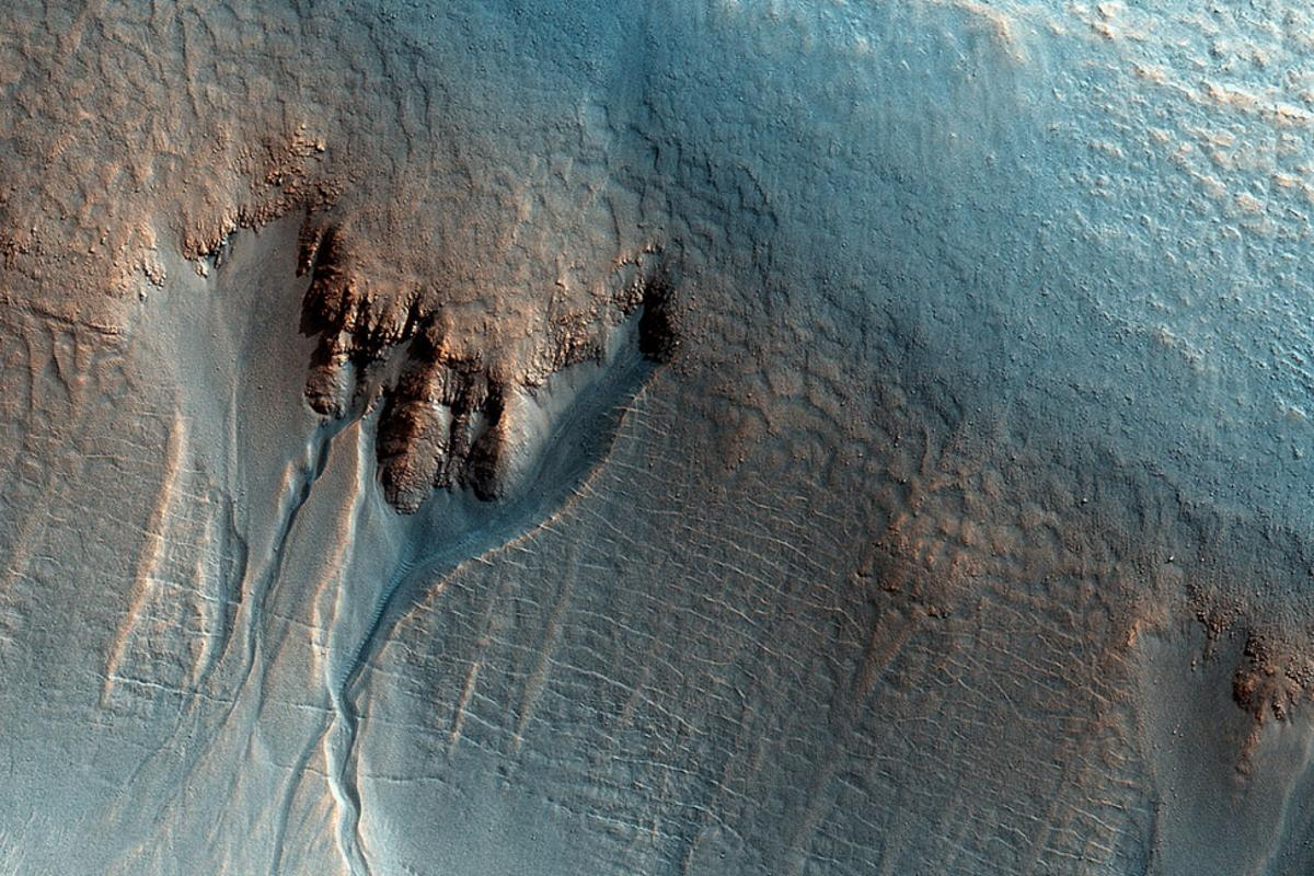 The shape of the gullies in this enhanced-color image of the Utopia Planitia region hints that water was involved in their formation