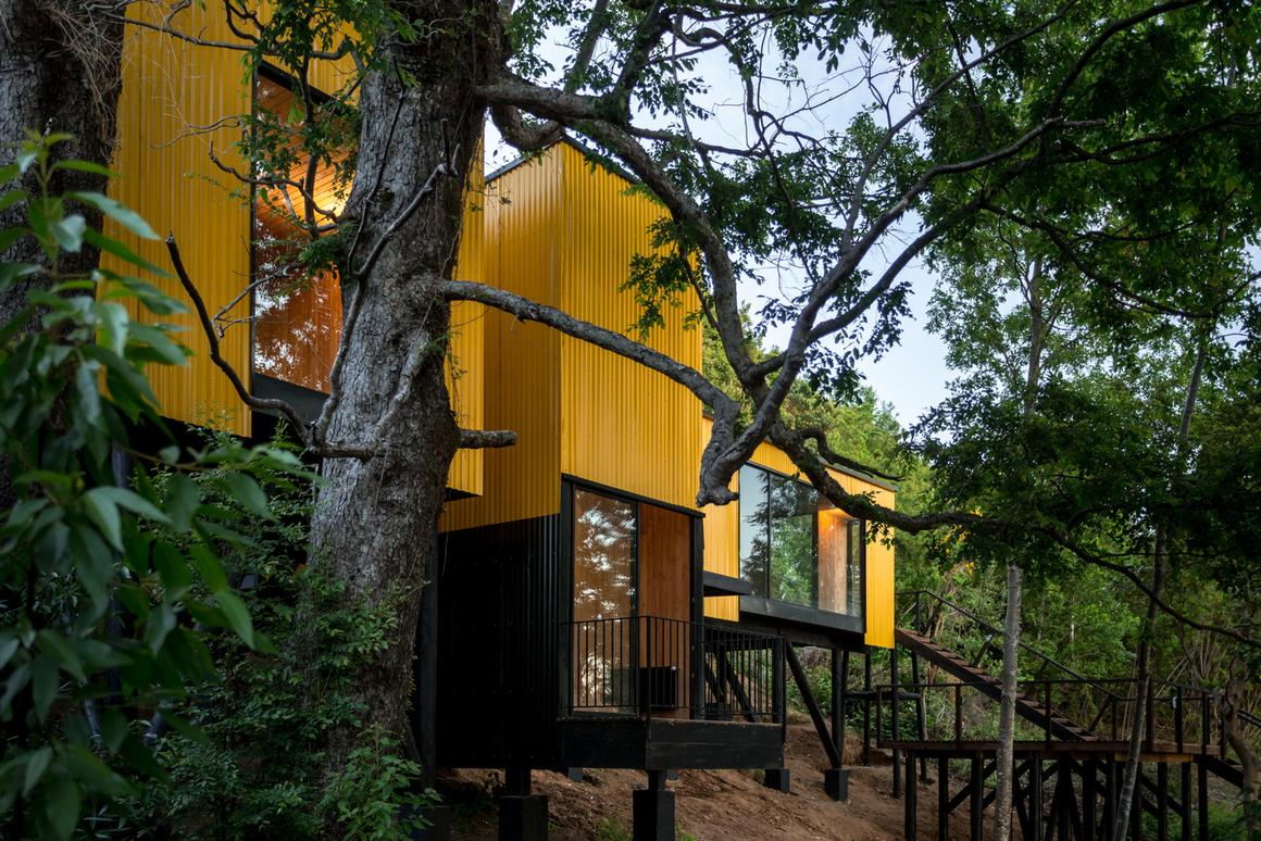 """Alejandro Soffia architectural studiocreated this innovative family """"treehouse"""" homeusing a series of prefabricated modules"""
