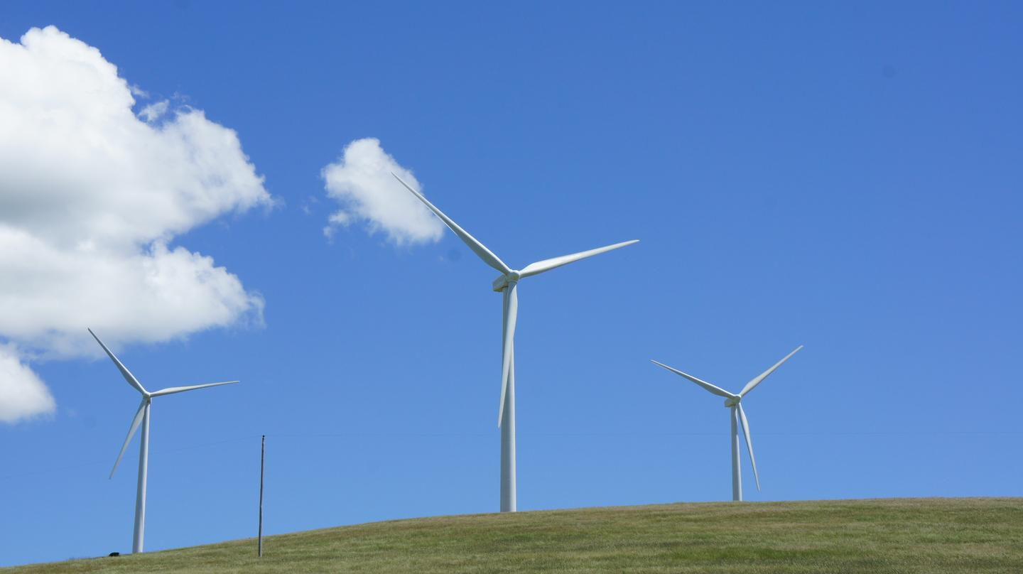 Chinese researchers have developed a biologically inspired control system for wind turbines (Photo: Gizmag)