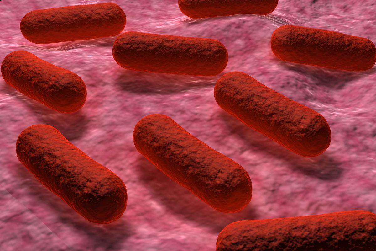 The technology has successfully been used to detect E. coli bacteria that was added to ground beef