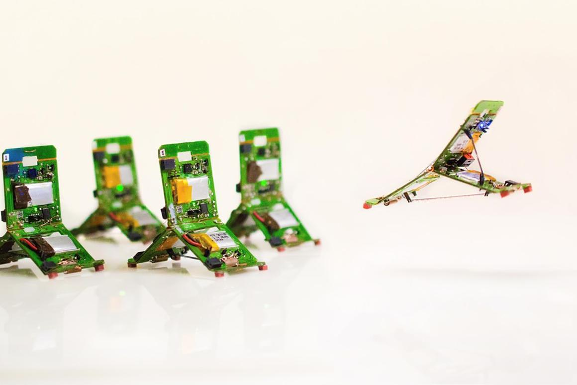 The Tribots can be assigned specific roles similar to ants
