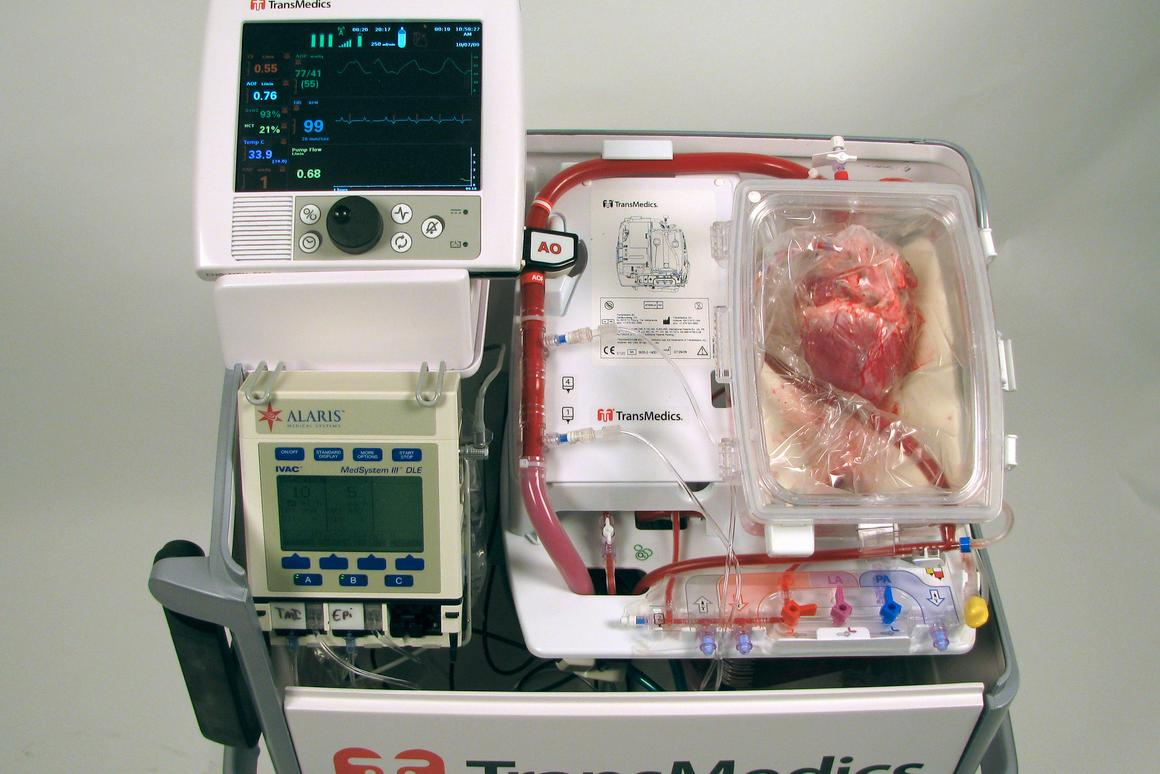 """Surgeons have successfully transplanted a """"dead"""" heart into a patient (Photo: Victor Chang Cardiac Research Institute)"""