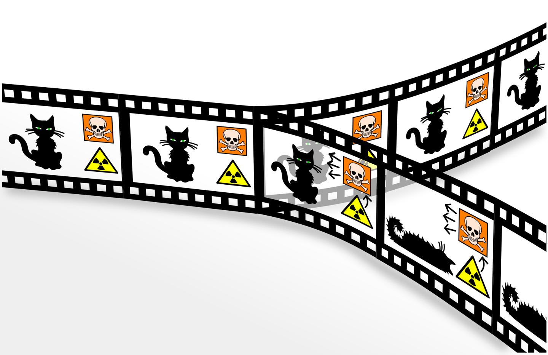 Schrödinger's Cat in a many-worlds quantum mechanical world