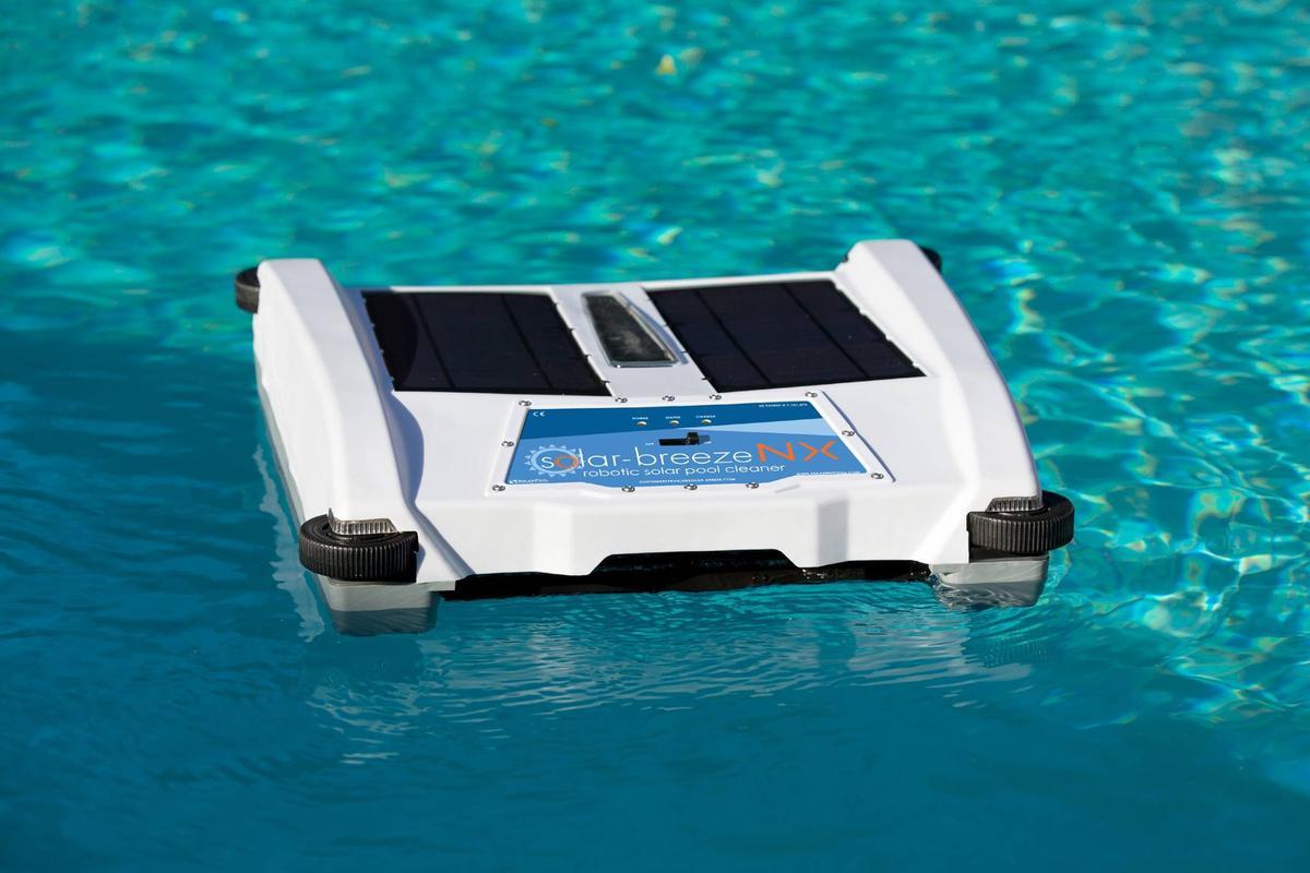 The pool skimmer in its native habitat