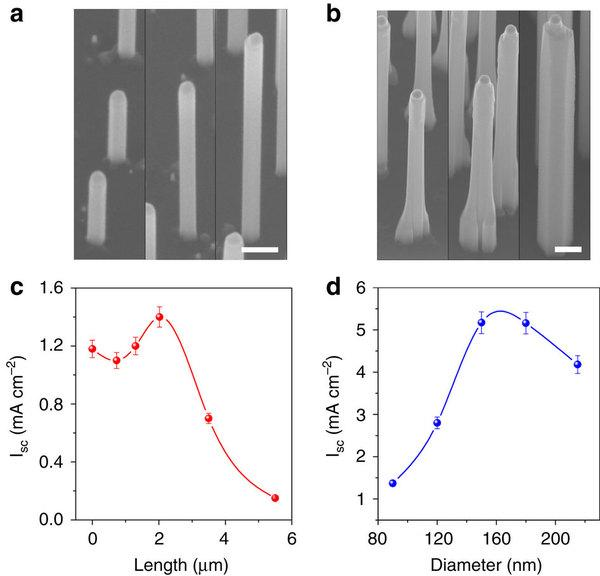 Optimizing the gallium phosphide nanowire geometry is a key element to success