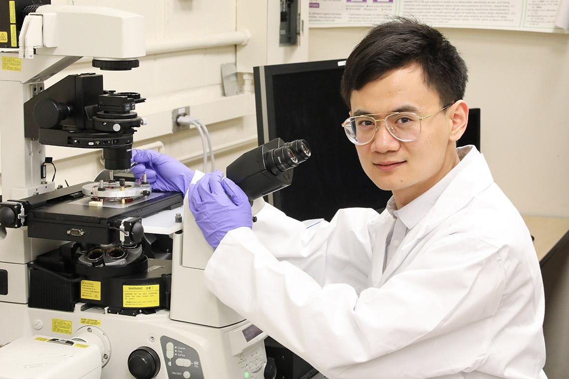 Researcher Xian Wang has designed nanobots that can be steered by magnets and are small enough to enter cells