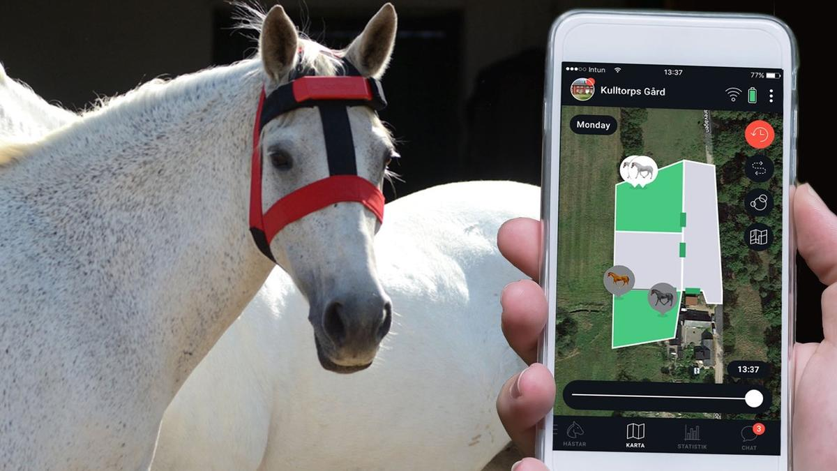 The HoofStep head unit communicates with an app on the user's phone