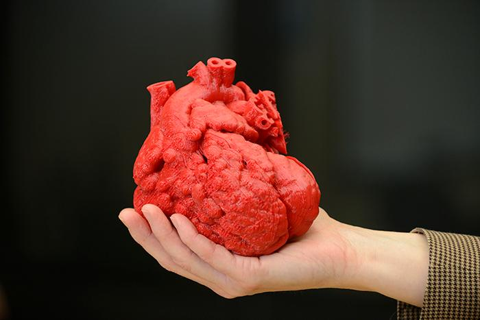 Built in three pieces using a flexible filament, the 3D-printed heart reportedly took around 20 hours and cost US$600