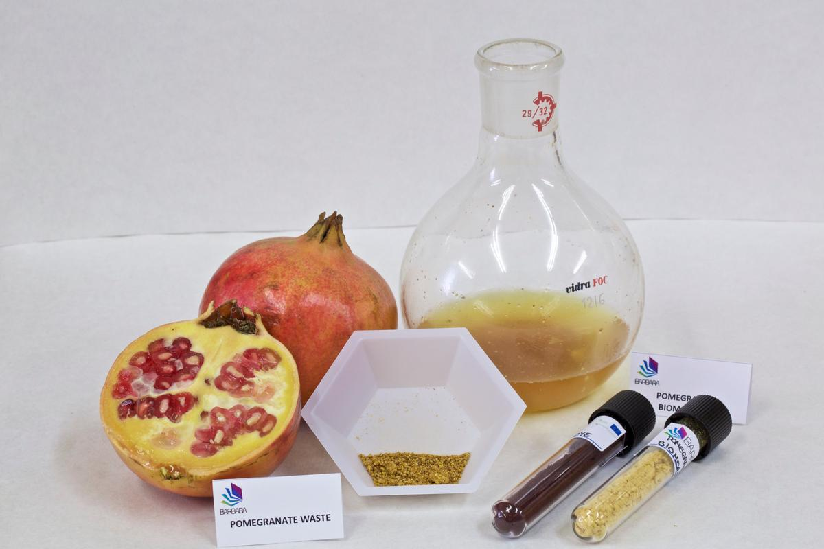 Samples of the agricultural extracts that were used in the study