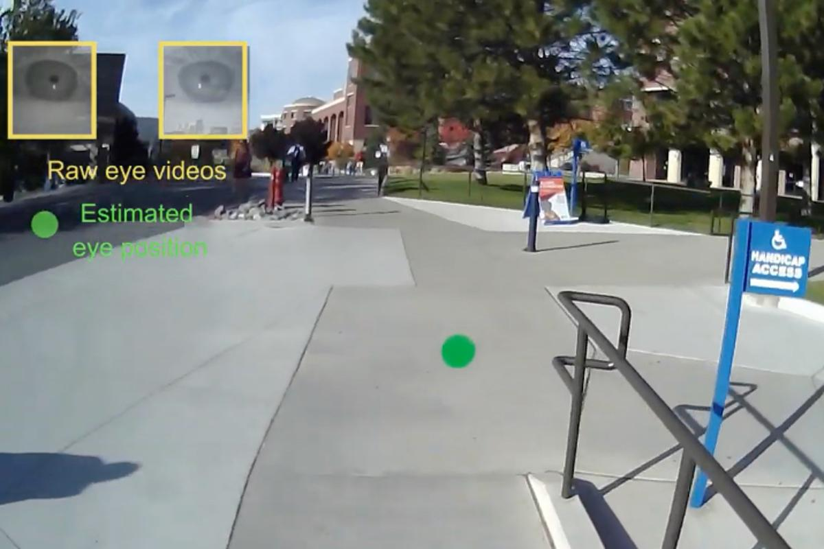 The green dot (middle) indicates where within the shot the person is looking