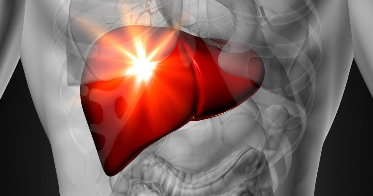 Discovery of liver cell with stem cell-like properties could eliminate need for organ transplants