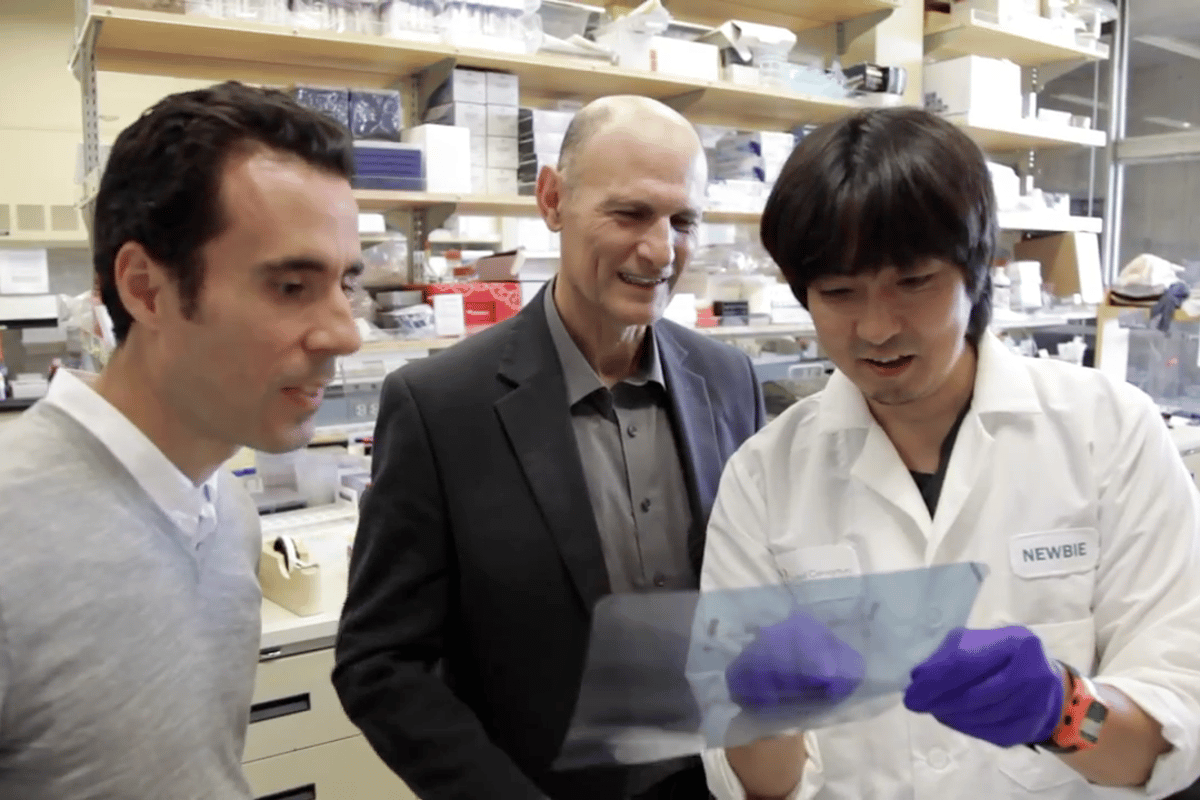 Scientists at the Salk Institute and the Chinese Academy of Science have identified what may be the underlying cause of premature-aging disorder Werner syndrome, and with it a possible key to reversing the aging process (Image: Salk Institute for Biological Studies)