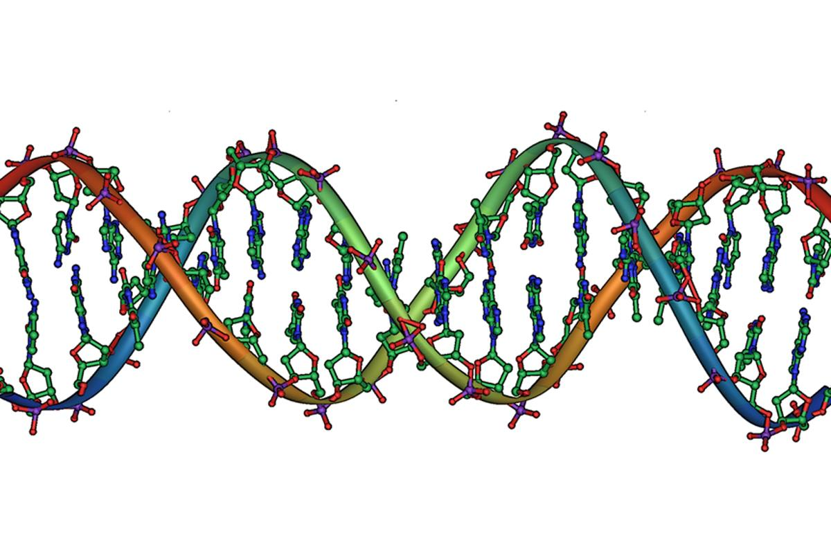 Scientists have created a nanoparticle that can deliver DNA deeply enough into a cell to allow genetic material to be activated (Image: Michael Strock)