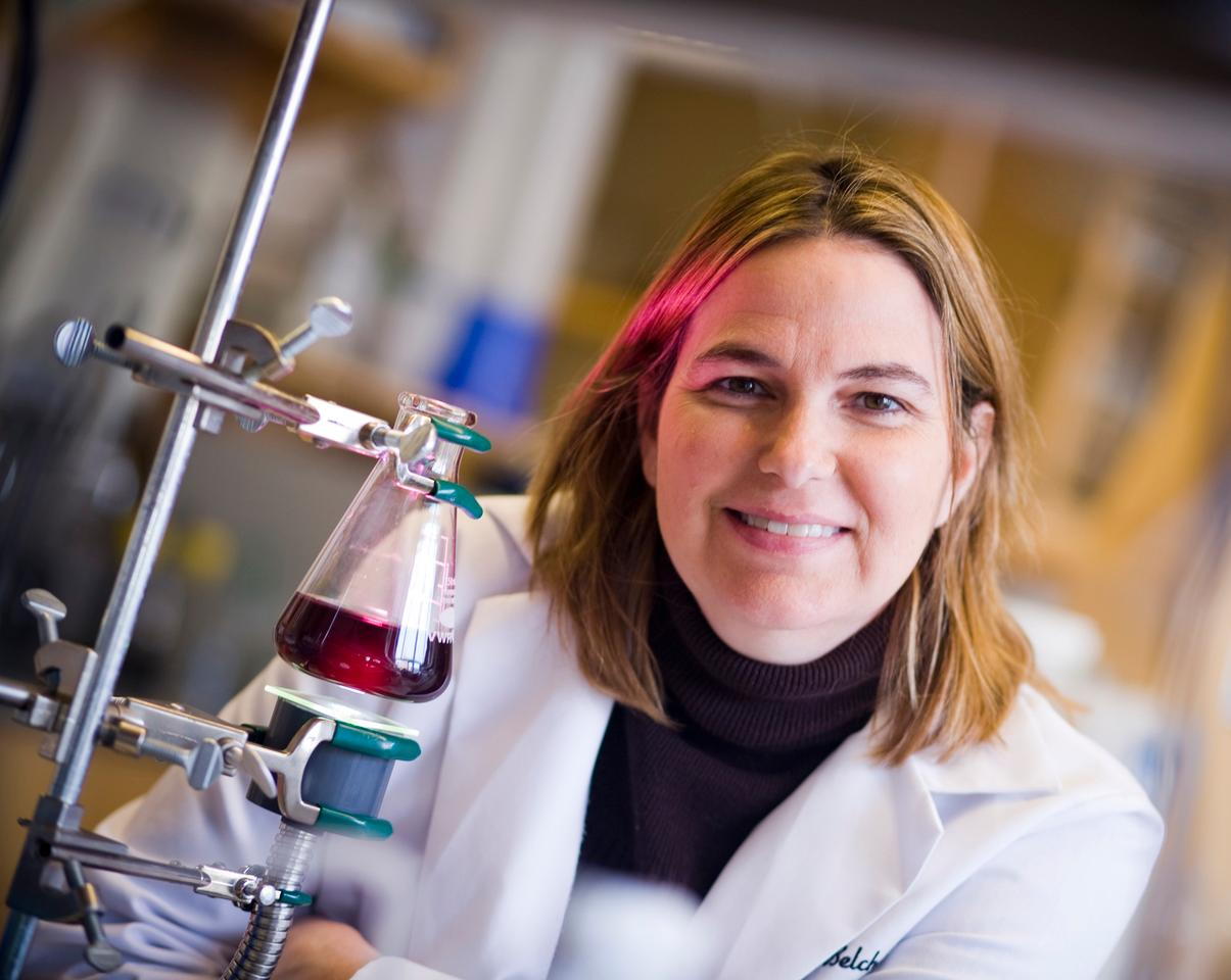 Angela Belcher, the Germeshausen Professor of Materials Science and Engineering and Biological Engineering, demonstrates a virus-templated catalyst solution used in harnessing energy from water. (Photo: Dominick Reuter)