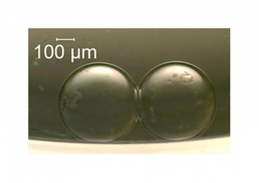 Two artificial cells that can act as a tiny battery(Credit: NIST)