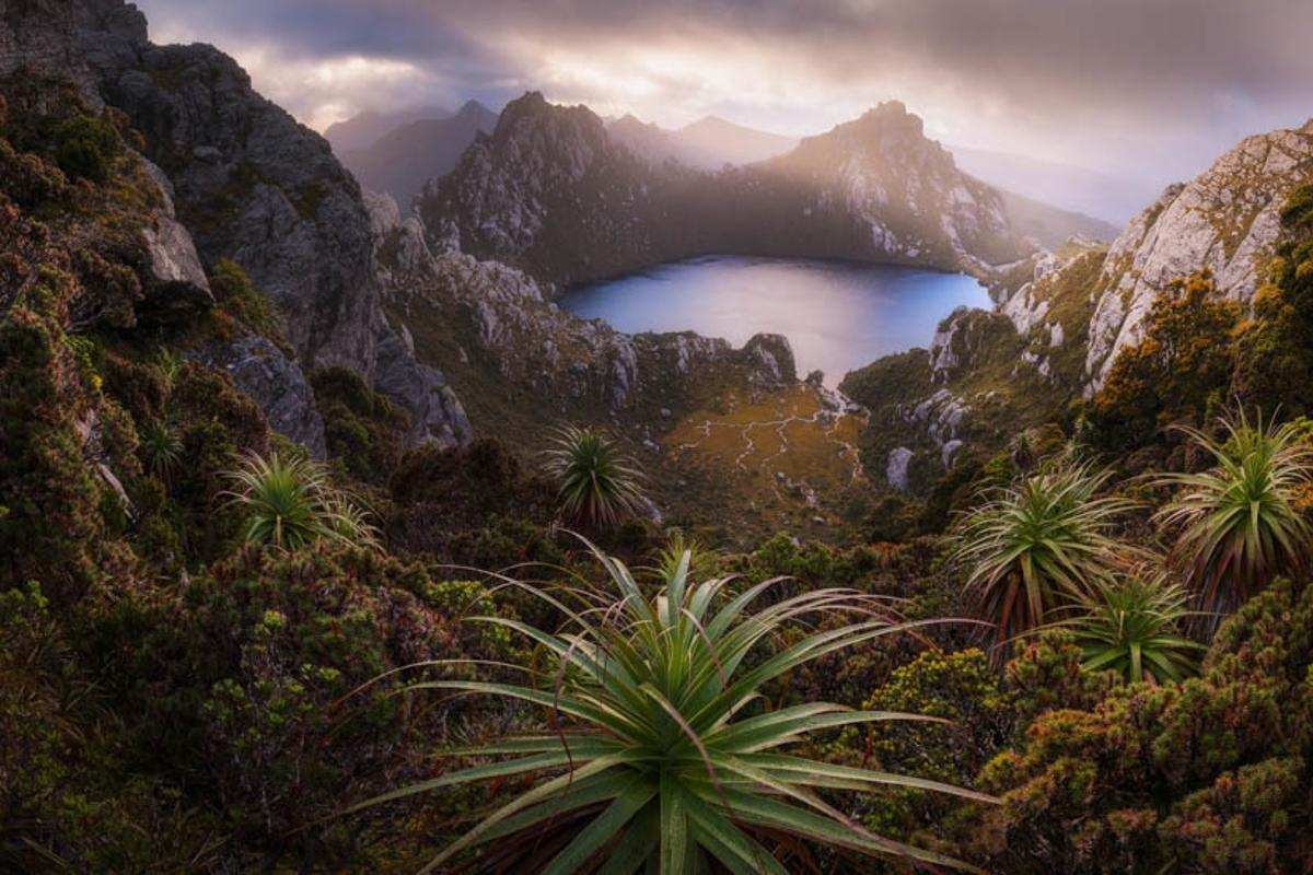 A highlight from the top 50 images in the Open, Nature category of this year's Pano Awards