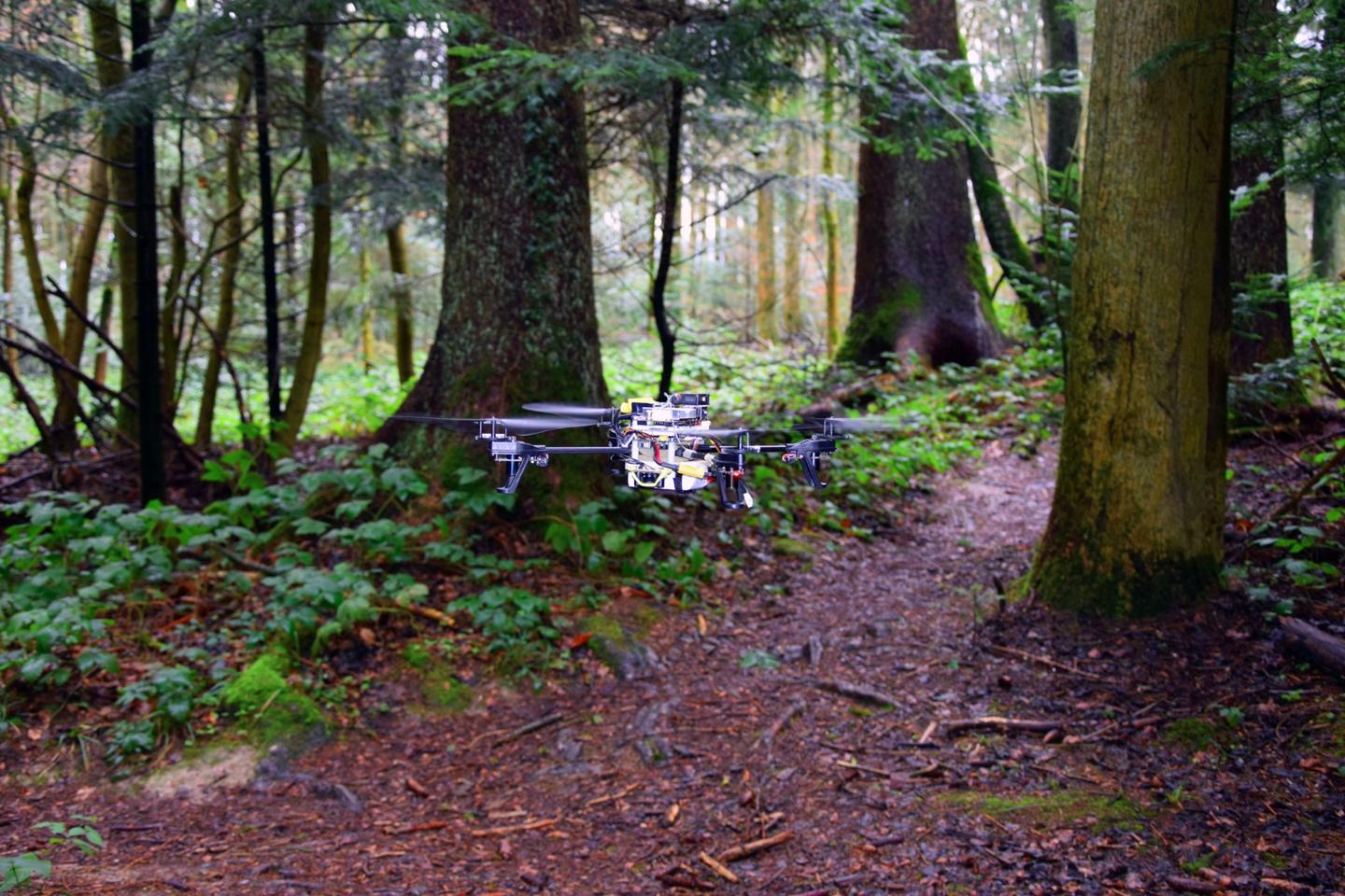 In field tests, a quadcopter was slightly better than humans at finding and following a previously-unseen trail
