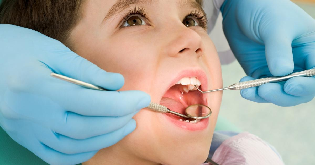 Stem cells from baby teeth patch up dental injuries in clinical trial
