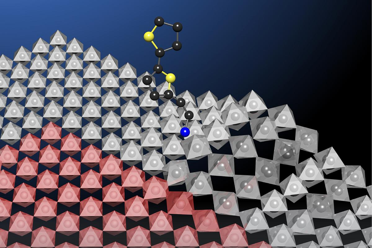 An artist's render of the bulky molecule bithiophenylethylammonium being added to the surface of perovskite to make it more stable