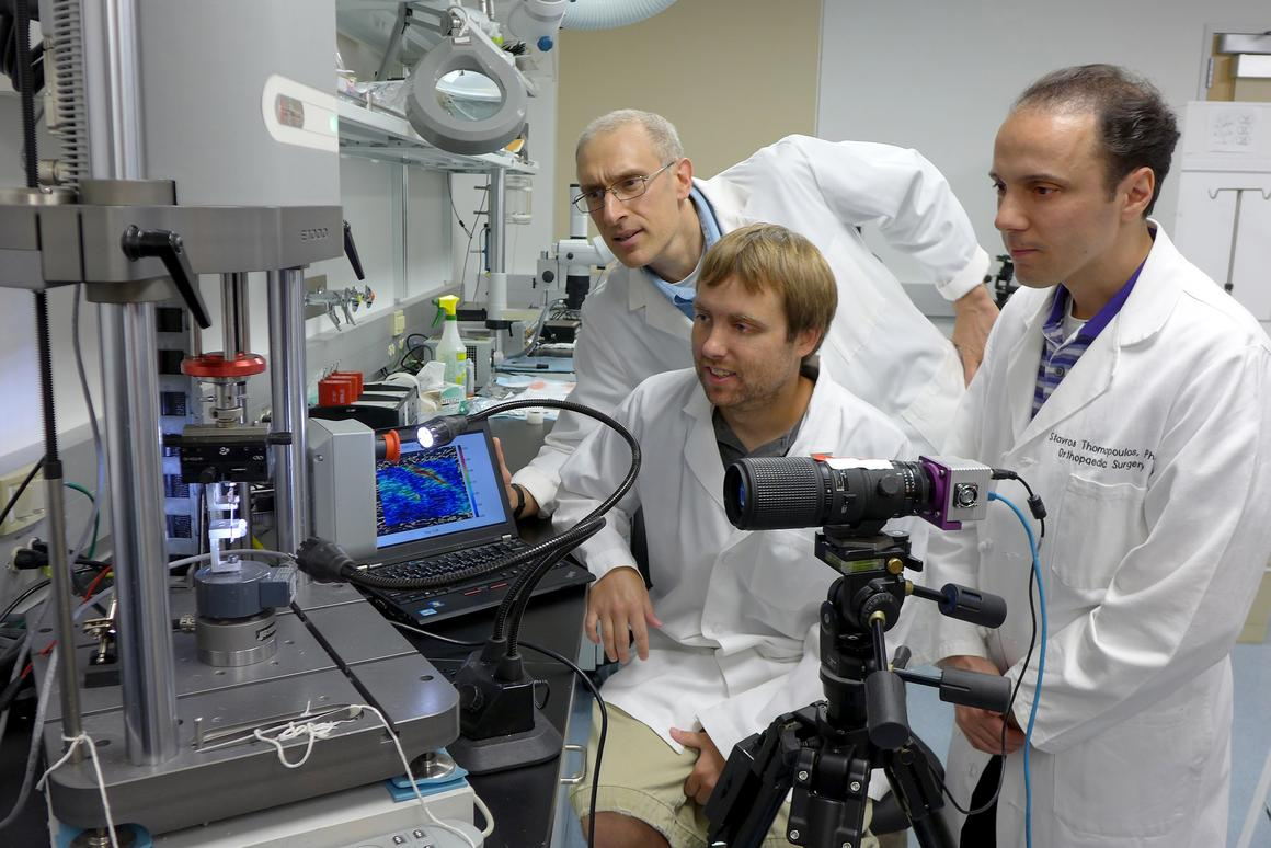 Muscle and tendon strains or tears may soon be detectable prior to injury, thanks to new algorithms developed by researchers at Washington University in St Louis (Photo: Robert Boston)
