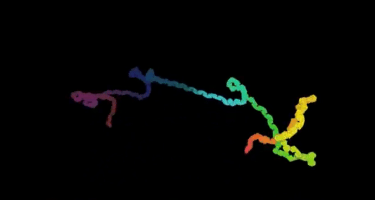 The MIT milli-motein is based on a protein molecule seen here in simulation