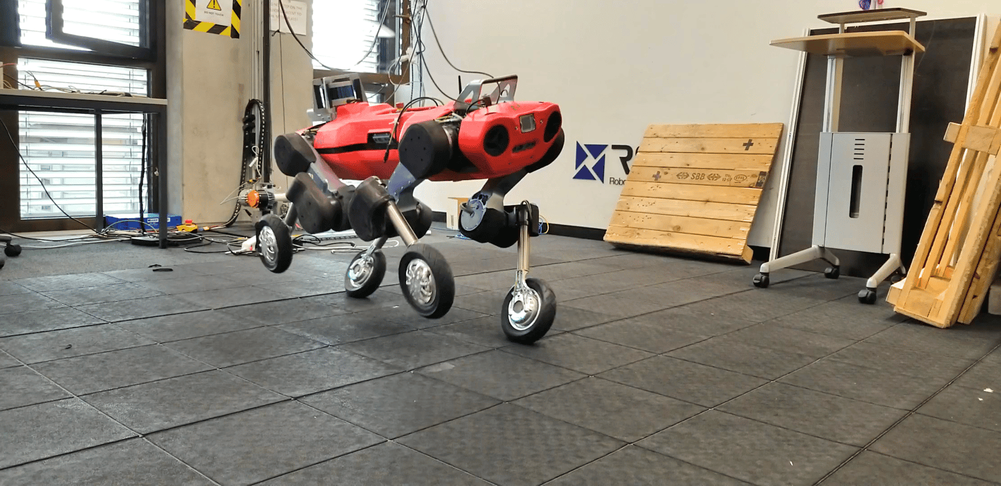 When the wheeled ANYmal has to switch to a walking gait, onboard sensors and a motion-planning microcontroller selectively control the torque in each wheel