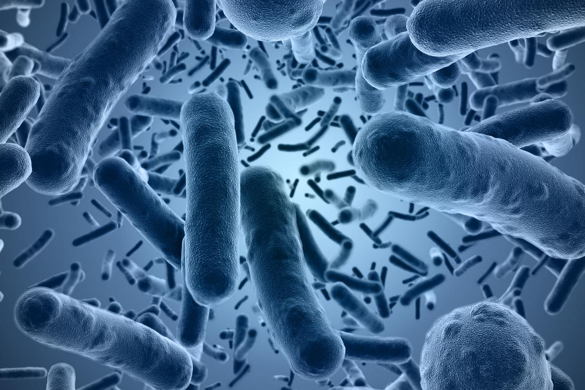 Researchers have found that an antivitamin version of Vitamin B1 could be an effective new way to kill antibiotic-resistant bacteria
