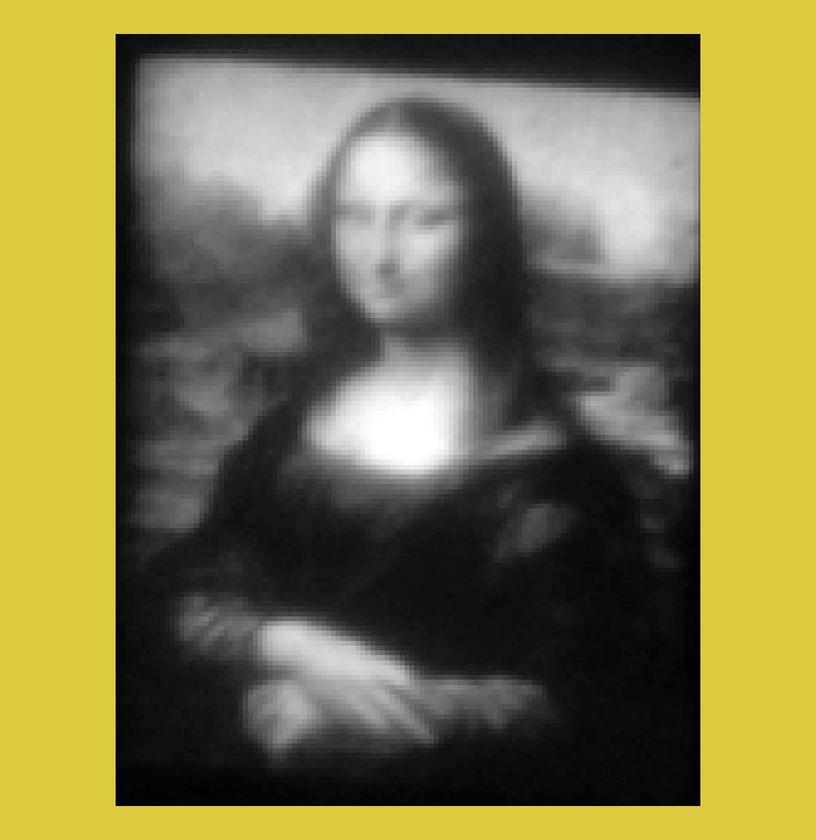 Mini Lisa is a 30 x 40 micron gray-scale QVGA rendering of Leonardo's Mona Lisa