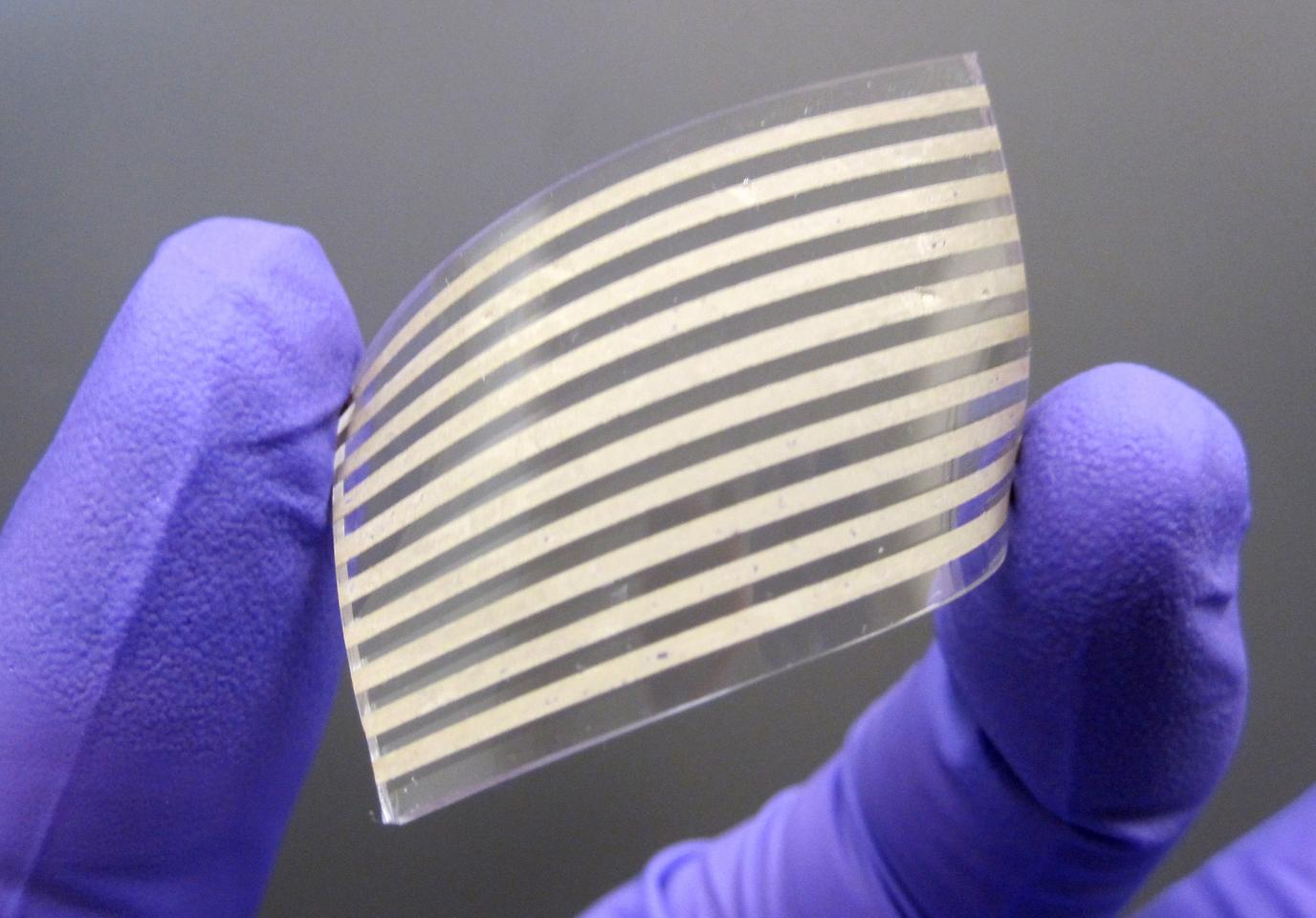 A team of scientists have created elastic conductors using silver nanowires, which are said to offer several advantages over other materials used in the past (Photo: Dr. Yong Zhu)