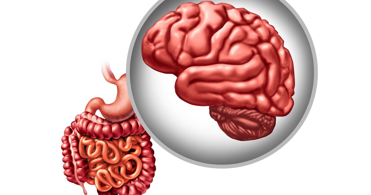 Specific gut bacteria may reduce severity of Parkinson's disease