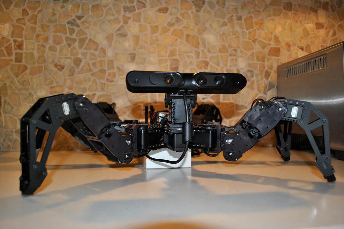 The Charlotte hexapod robot