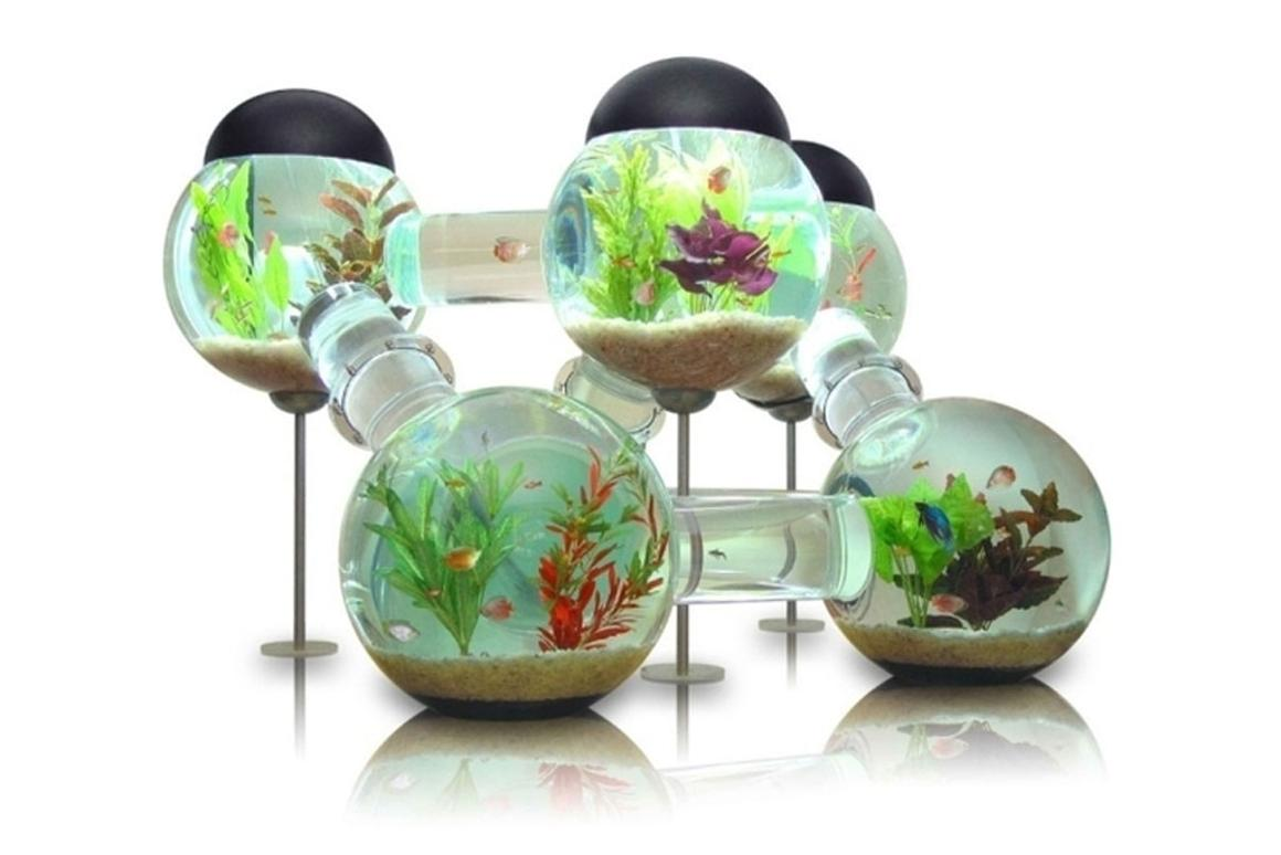 The Labyrinth Aquarium can be used with or without a stand