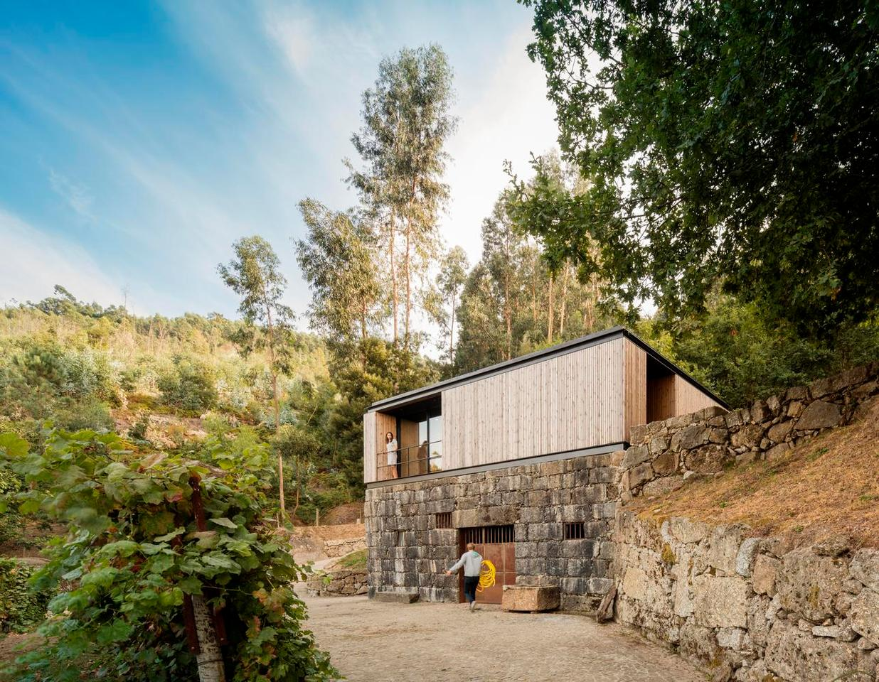 Pavilion House is separated from the main house by the surrounding vineyard and forest landscape