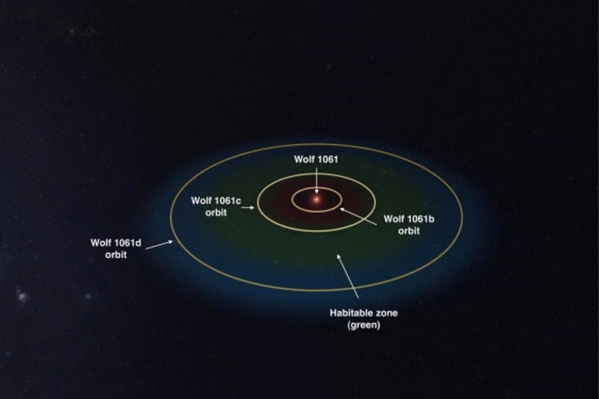Wolf 1061 and its orbiting planets with the habitable region in green