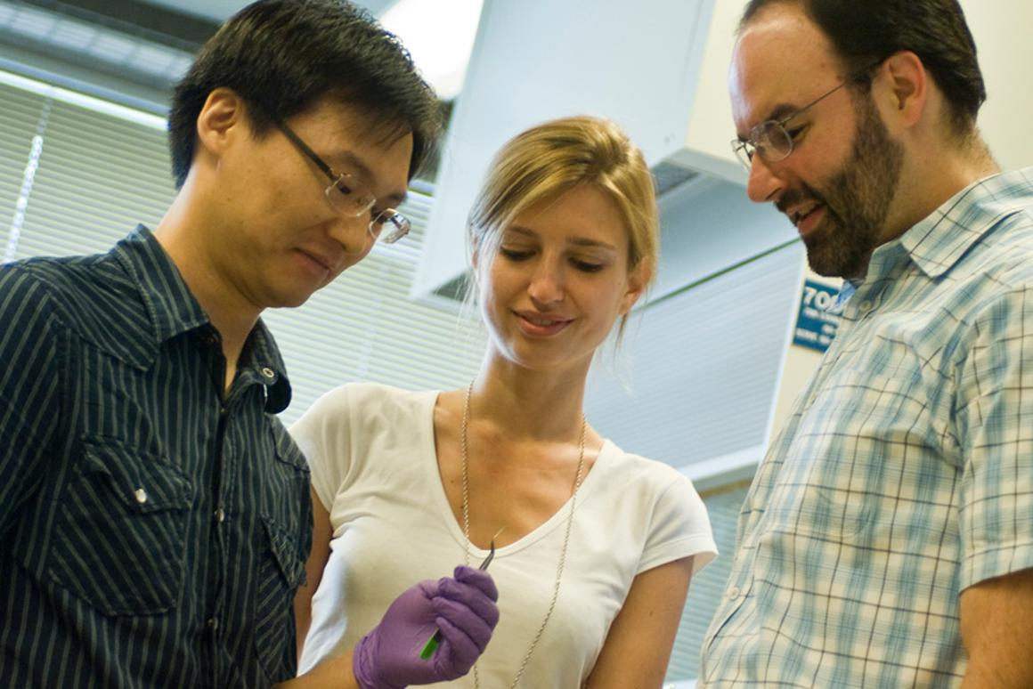 Postdoctoral associate Jae-Hee Han, left, graduate student Geraldine Paulus and associate professor Michael Strano built a fiber of carbon nanotubes that can concentrate solar energy (Image: Patrick Gillooly)