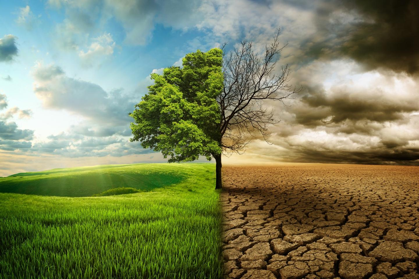 A special report from the IPCC entitled Climate Change and Land will form the basis of scientific input for upcoming climate and environment negotiations