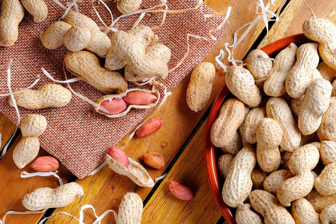 A treatment for peanut allergies is on a path to be approved and on the market by early 2020