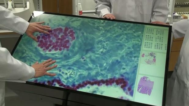 The 46-inch Multitouch Microscope