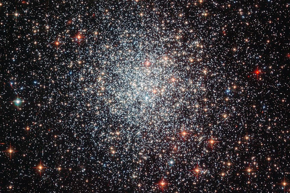 With current methods, it's much easier to determine the ages of stars in clusters, such as NGC 1783, as pictured here by the Hubble Space Telescope